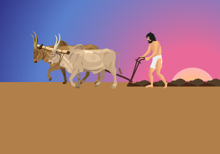 Ancient man in a loincloth works the land with oxen and plough. Vector illustration Illustration