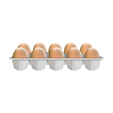 Raw chicken eggs in cardboard box. Vector illustration, isolated on white background.