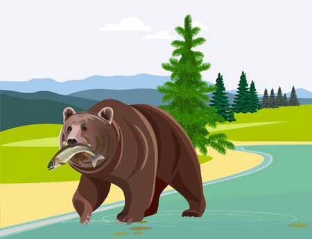 Bear with fish in his mouth against the background of mountains. Vector illustration Ilustrace
