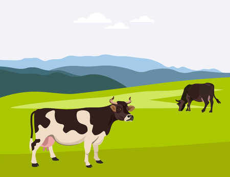 Cows grazing on a summer pasture. Vector illustration