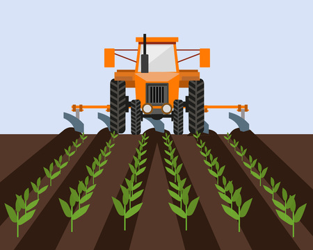 Farm tractor cultivating field with young sprouts. Vector illustration