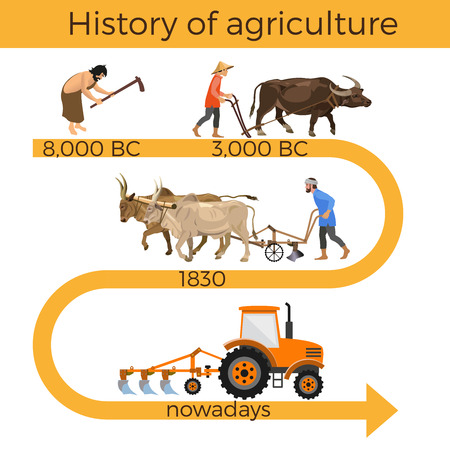 Historical chronology of agriculture. Collection of vector illustrations for infographics Illustration