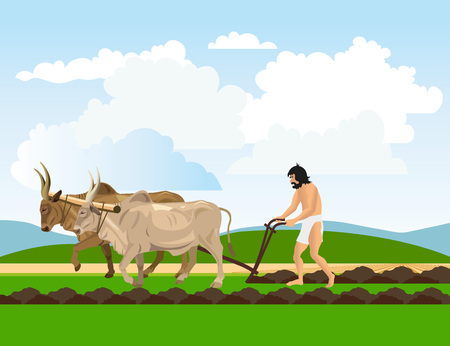Ancient man in a loincloth works the land with oxen and plough. Vector illustration 矢量图像