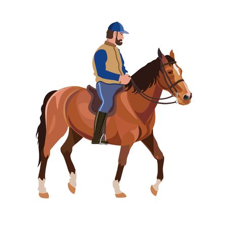Horseback rider vector illustration. Illustration
