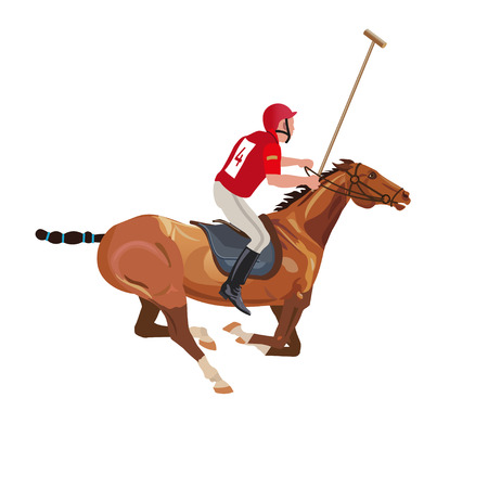 Polo player riding a horse. Vector illustration isolated on white background 矢量图像