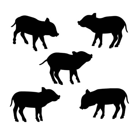 Silhouettes of wild boar piglet. Set of vector illustration isolated on white background Ilustrace