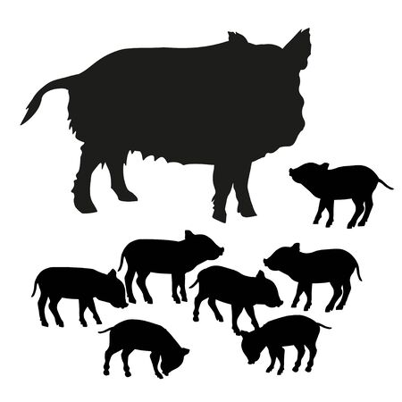 Silhouettes of wild boar sow with piglets. Vector illustration isolated on white background