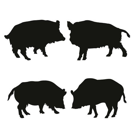 Set of silhouettes of wild boar. Vector illustration isolated on white background