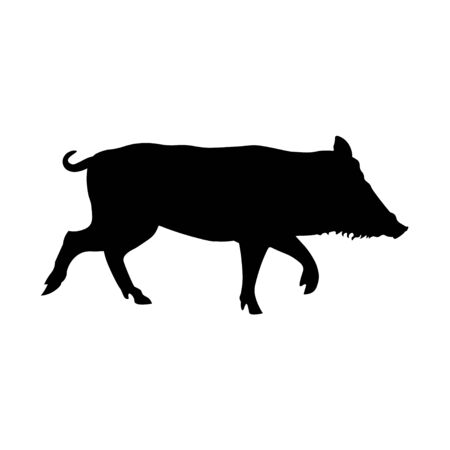 Silhouette of running wild boar. Vector illustration isolated on white background