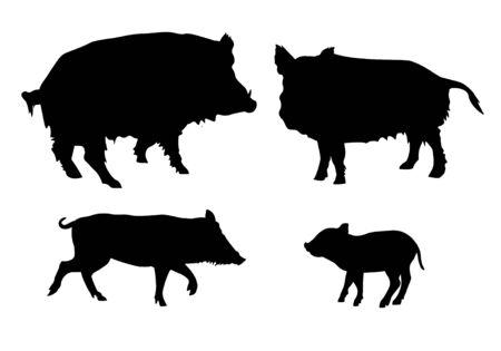 Conjunto de siluetas de cerdos salvajes. Ilustración de vector aislado sobre fondo blanco.