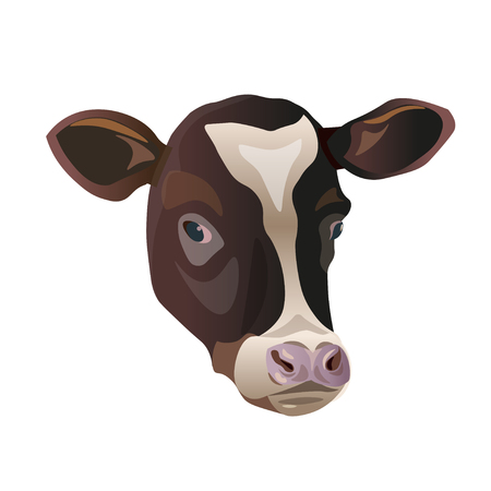 Color sketch of a friesian cow's face. Vector portrait isolated on white background