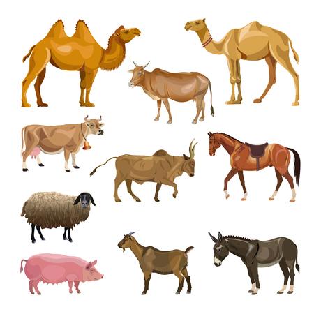 Set di animali da fattoria. Illustrazione vettoriale isolato su sfondo bianco
