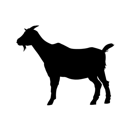 Goat standing black silhouette side view. Vector illustration isolated on white background Иллюстрация