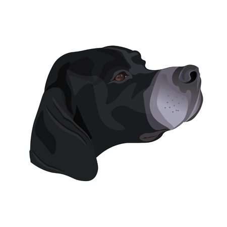 Pointer head. Vector illustration isolated on white background