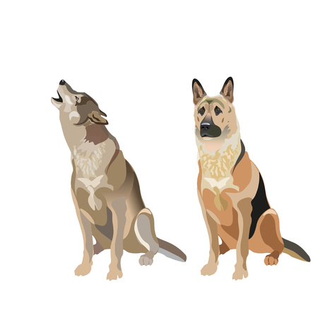Dog and wolf. Vector illustration isolated on white background