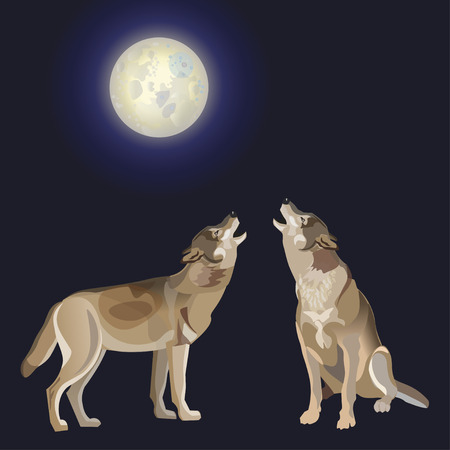 Two wolves howling at the moon. Vector illustration isolated on dark background Illustration