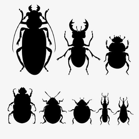 Conjunto de siluetas vectoriales de diferentes escarabajos. . Ilustración de vector aislado sobre fondo blanco.