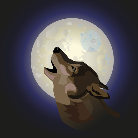 Howling gray timber wolf. Vector illustration isolated on dark background