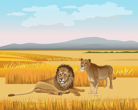 The lioness and the male lion in the savanna against the background of the mountains. Vector illustration