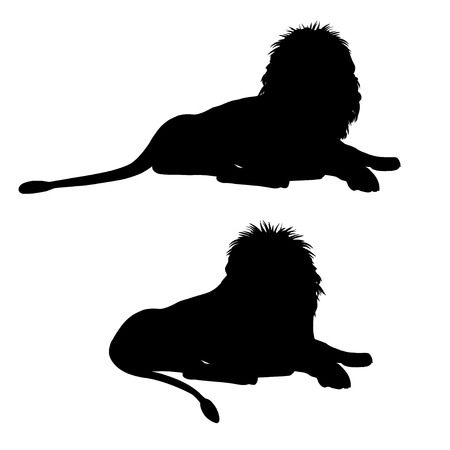 Silhouettes of a lying lion. Vector illustration isolated on the white background