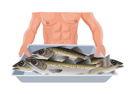 Mens hands hold a tray with freshly caught fish. Vector illustration isolated on white background