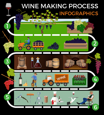 Wine making process. Vector illustration isolated on white background Ilustração