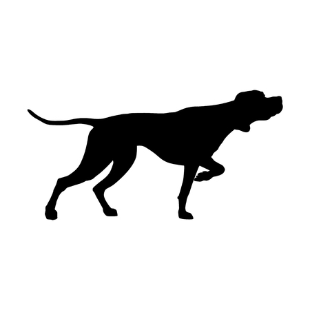 Silhouette of English pointer. Gun dog breed. Vector illustration isolated on the white background