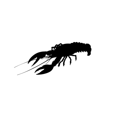 Silhouette of live lobster. Vector illustration isolated on the white background