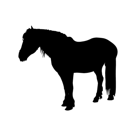 Silhouette of shire draft horse. Vector illustration isolated on white background Ilustração