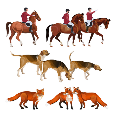 Fox hunting set. Hunt master, pack hounds and foxes. Vector illustration isolated on white background