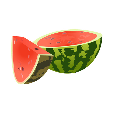 Half and slice watermelon. Vector illustration isolated on white background