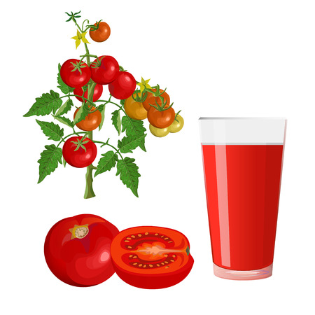 Fresh tomatoes and glass of juice. Vector illustration isolated on white background