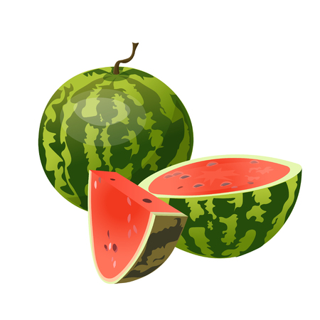 Whole, half and slice watermelon. Vector illustration isolated on white background