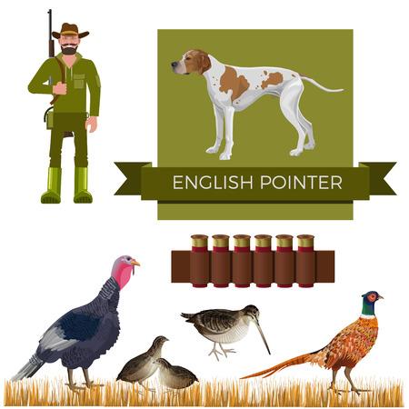 Hunting gun dog. Set of vector illustration with English pointer, hunter and game-bird: wild turkey, pheasant, quail, woodcock on white background Illustration