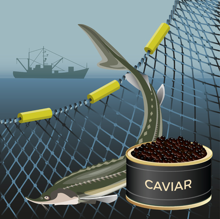 Sturgeon fish and black caviar on the background of the marine nets and fishing ship. Vector illustration