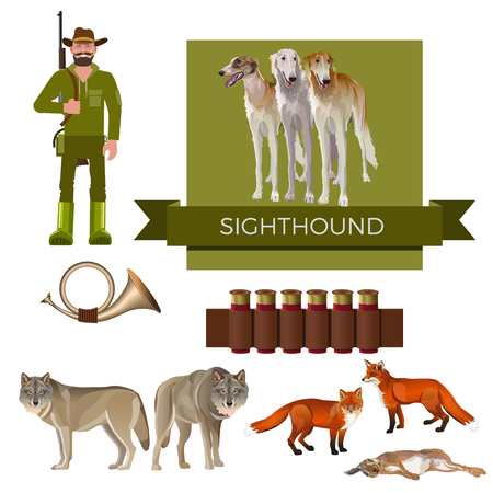 Hunting dog. Set of vector illustration with sighthounds, hunter, horn, foxes, wolves and cartridges on white background