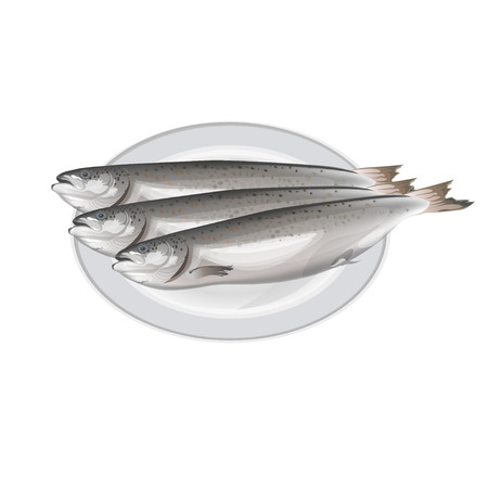 Three salmon fish lying on the plate. Vector illustration isolated on white background