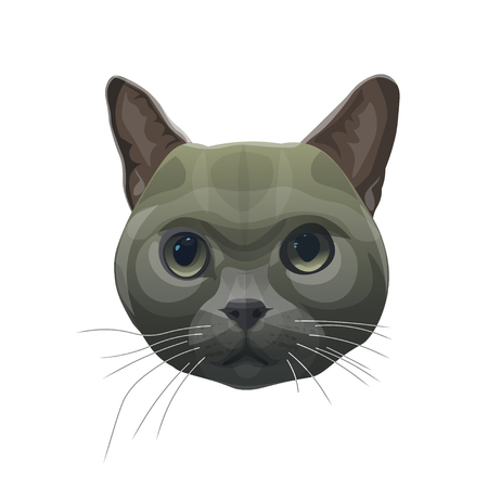 Cat head portrait. Vector illustration isolated on white background