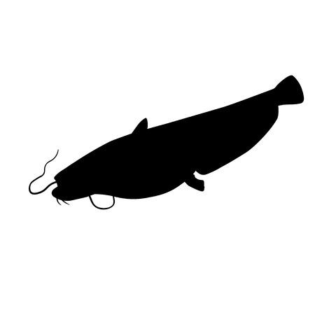 Silhouette de poisson-chat européen ou wels. Illustration vectorielle isolée sur fond blanc
