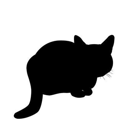 Silhouette cat sitting in ambush. Vector illustration isolated on white background