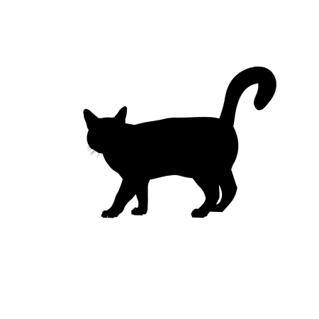 Silhouette cat walking with tail up. Vector illustration isolated on white background Stock Illustratie