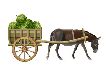 Burro tira de un carro de madera con sandías. Ilustración de vector aislado sobre fondo blanco.