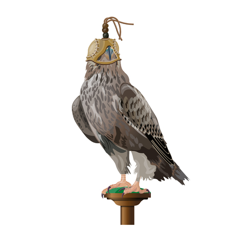 A hunting falcon wearing a hood cover over its head. Vector illustration isolated on the white background.
