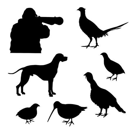 Zestaw sylwetek polowania wektorowego z angielskim wskaźnikiem, myśliwym i ptaszkiem łownym: dziki indyk, bażant, przepiórka, słonka Ilustracje wektorowe