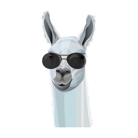 Comic portrait of llama in black glasses. Vector illustration isolated on white background