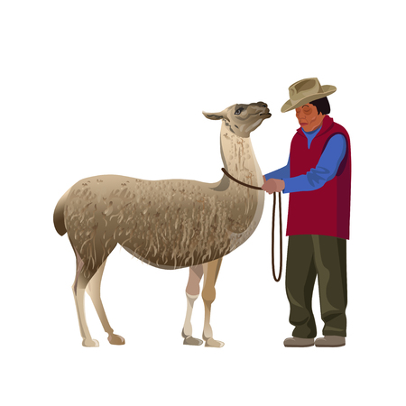 South American farmer with llama. Vector illustration isolated on the white background  イラスト・ベクター素材