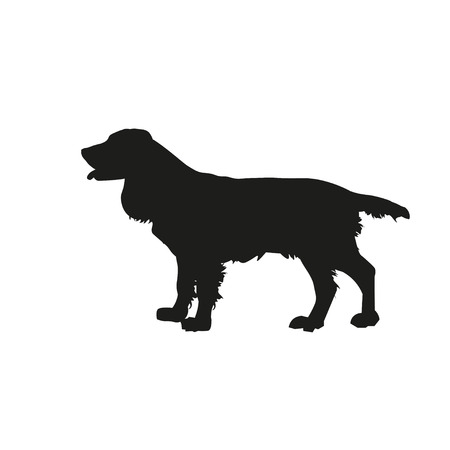 Silhouette of hunting dog. English springer spaniel stands sideways in full growth. Vector illustration isolated on white background