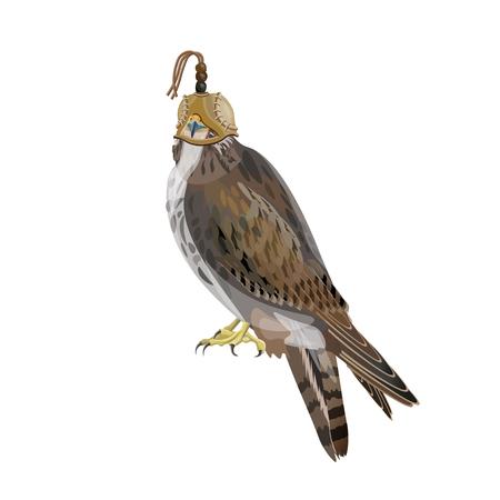 Un faucon de chasse portant une cagoule sur la tête. Illustration vectorielle isolée sur fond blanc.
