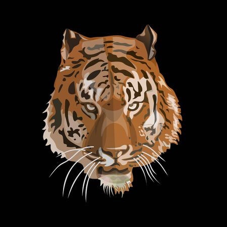 Tiger face image. Vector illustration isolated on the black background Illustration
