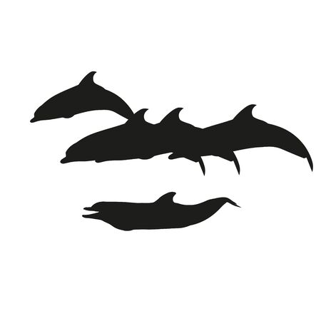 Silhouettes of swimming dolphins. Vector illustration isolated on white background